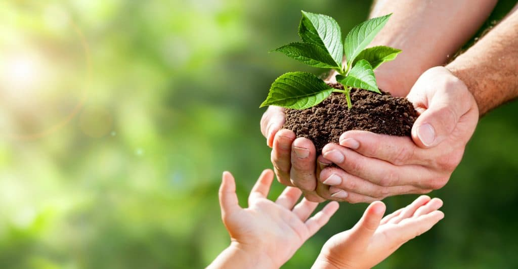 man handing child a plant in earth - photo by Philip Steury AdobeStock